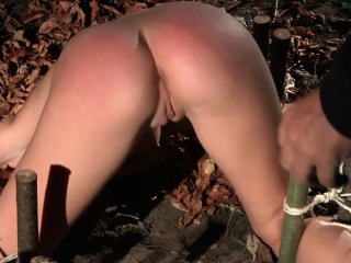 Slave plagued in an obstacle forest coupled with indoor even fustigate